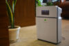 Featured Image - Air Purifier Plants vs Machines by Green Decor